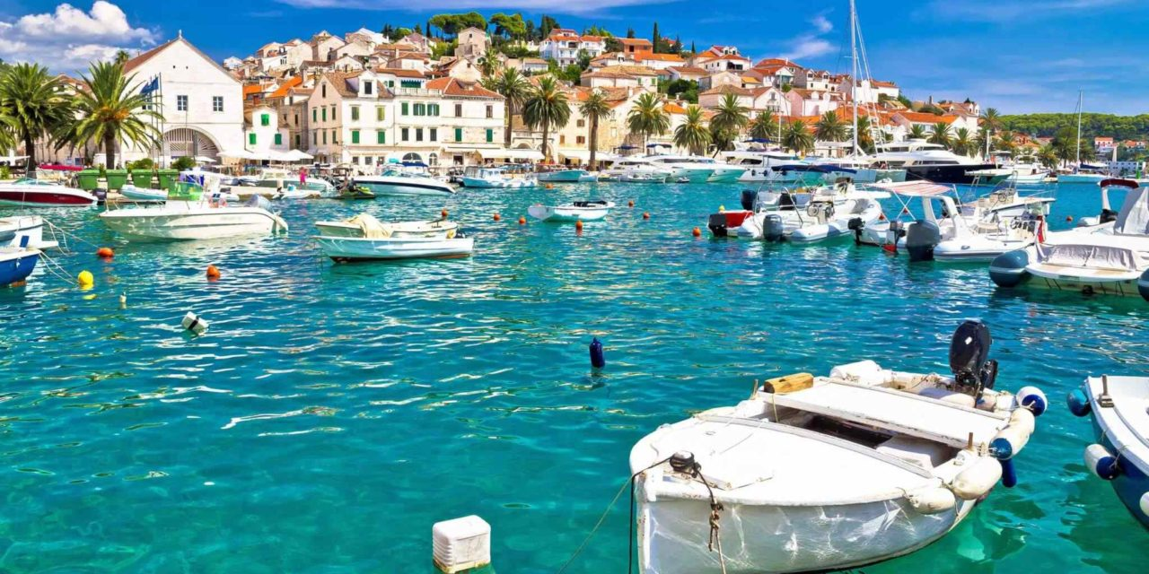 Blue Dalmatia